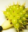 фруктовый ЕЖИК